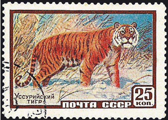 Уссурийский тигр, 25 копеек, 1959 год
