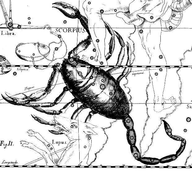 Изображение созвездия Скорпиона в звездном атласе Иоганна Гевелия