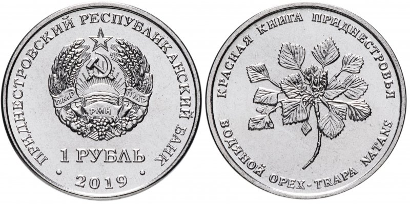 Приднестровье, 1 рубль 2019 года «Красная книга - Водяной орех (чилим)»