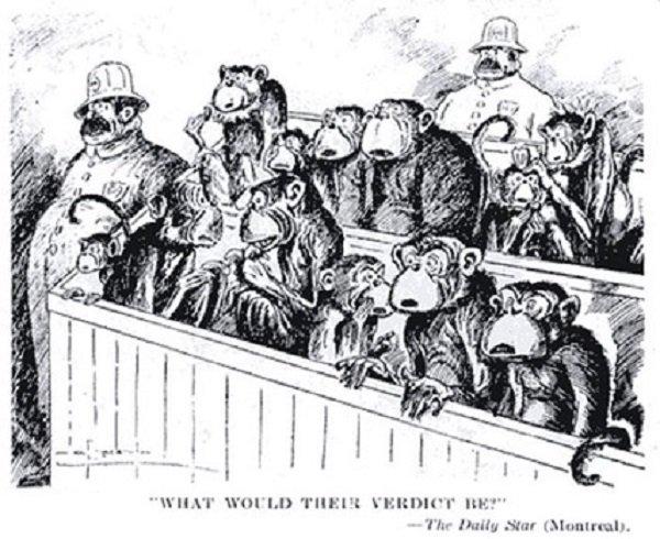 Карикатура на «Обезьяний процесс». 1925 год