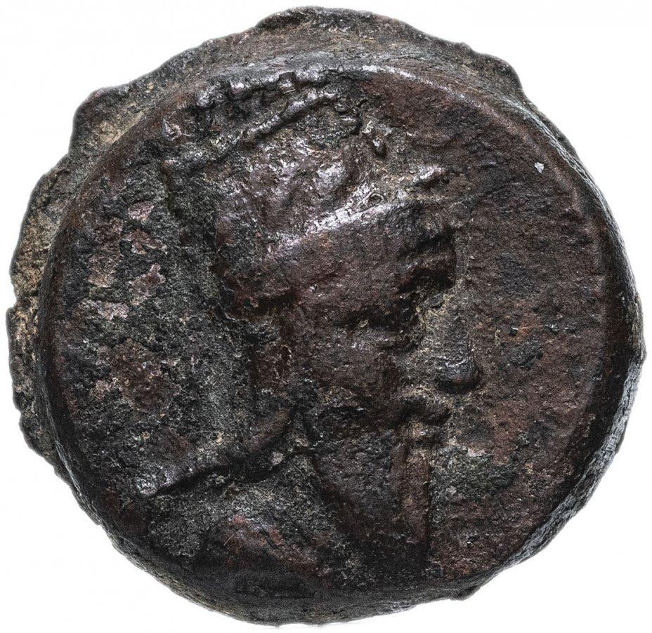 купить Великая Армения, Тигран V, 6-12 годы, Дихалка. (Слон)