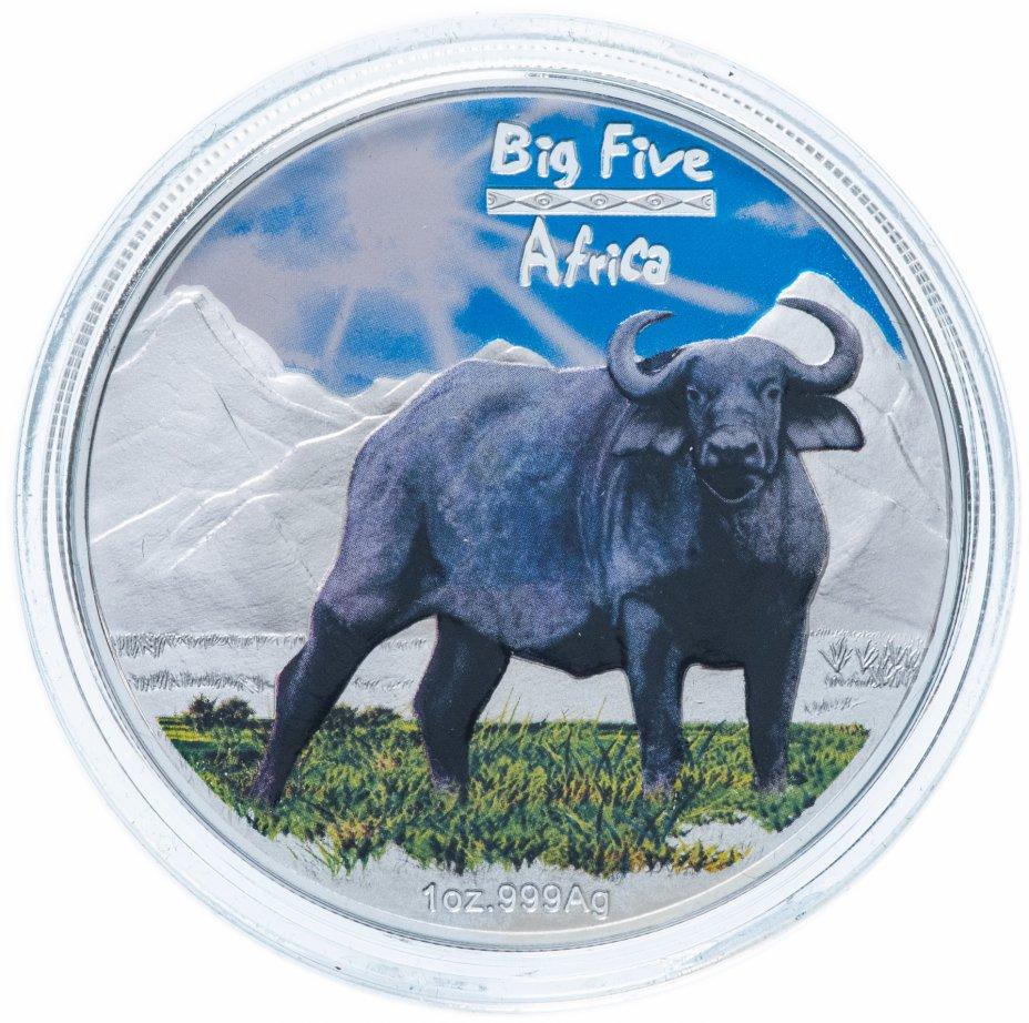 """купить Конго 240 франков 2008 UNC """"Большая африканская пятерка: буйвол"""" в футляре, с сертификатом"""