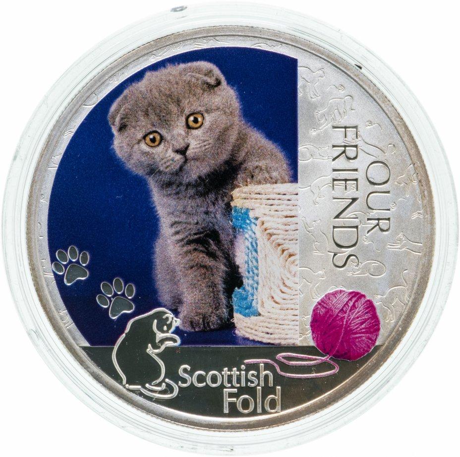 """купить Ниуэ 2 доллара 2012 """"Наши друзья - Шотландская вислоухая кошка"""" в оригинальном подарочном футляре с сертификатом"""