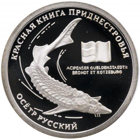 """купить Приднестровье 10 рублей 2008 """"Осетр русский"""""""