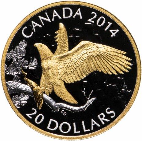 """купить Канада 20 долларов 2014 """"Лысый орел с рыбой позолота"""" в футляре, с сертификатом"""