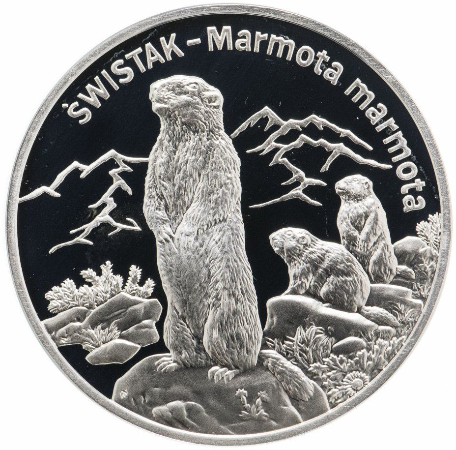 купить Польша 20 злотых (zlotych) 2006  Всемирная природа - Сурок