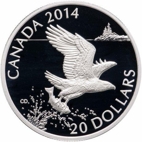 """купить Канада 20 долларов 2014 """"Лысый орел с рыбой"""" в футляре, с сертификатом"""