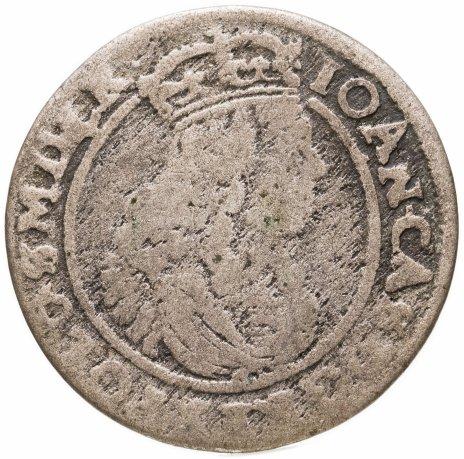 купить Речь Посполитая шостак (6 грошей) 1664 Ян Казимир