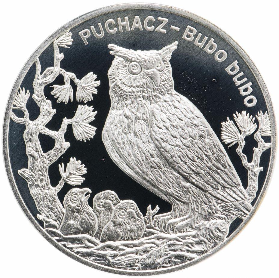 купить Польша 20 злотых (zlotych) 2005  Всемирная природа - Филин