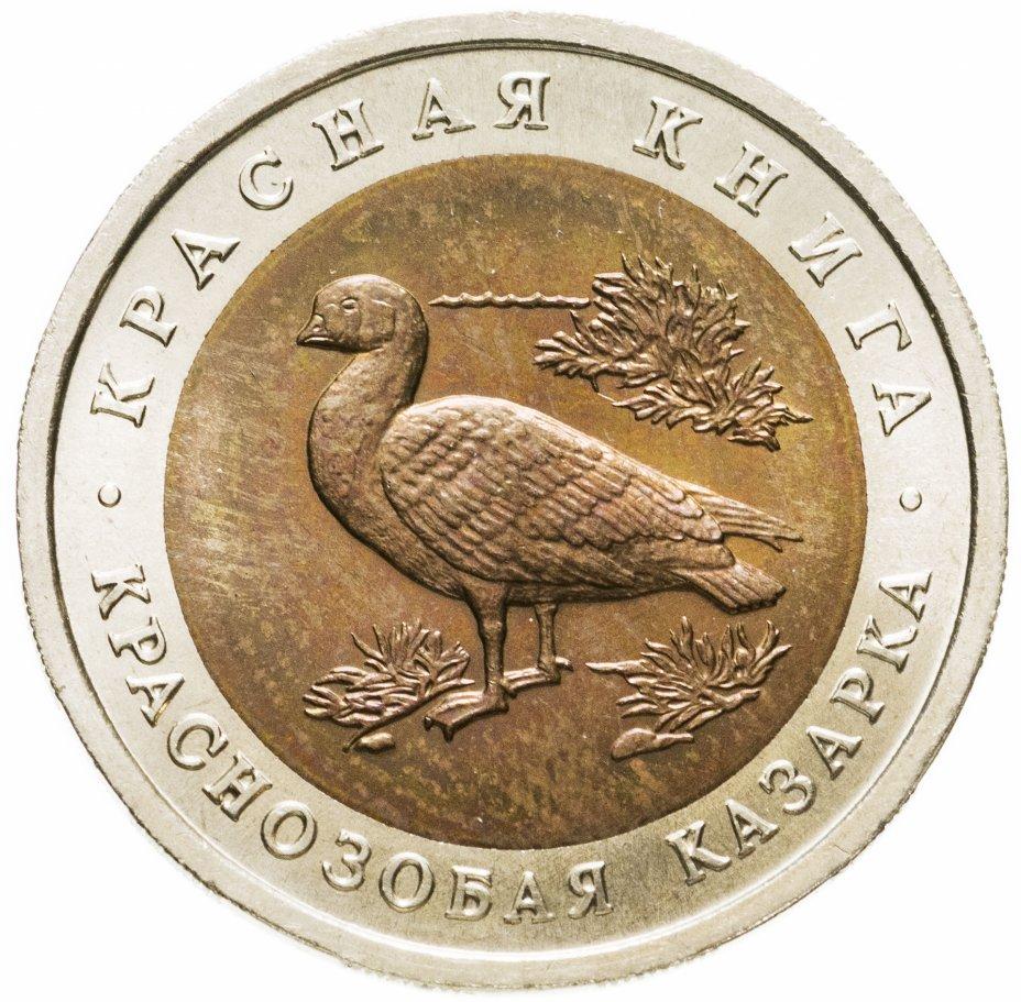 купить 10 рублей 1992 ЛМД Краснозобая казарка