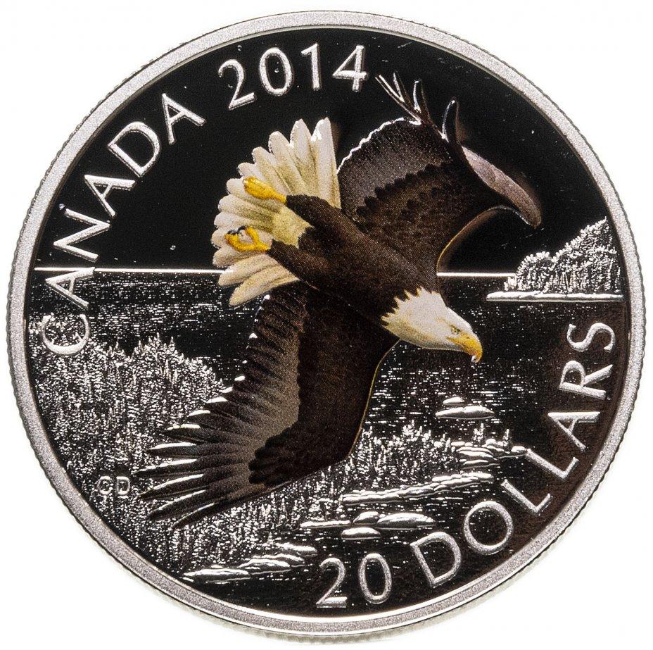 """купить Канада 20 долларов 2014 """"Парящий лысый орел"""" в футляре, с сертификатом"""