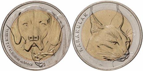 """купить Турция набор монет 1 куруш 2021 """"Фауна Турции"""" (2 штуки)"""