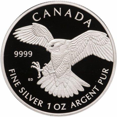 """купить Канада 5 долларов 2014 """"Сокол"""" в футляре, с сертификатом"""