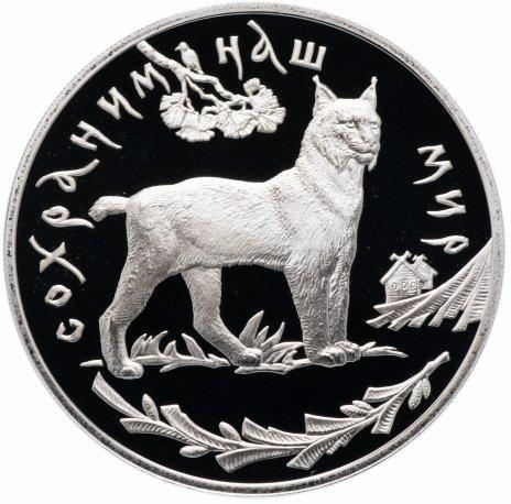 купить 3 рубля 1995 ЛМД Proof рысь