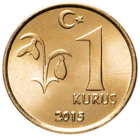 купить Турция 1 куруш (kurus) 2015