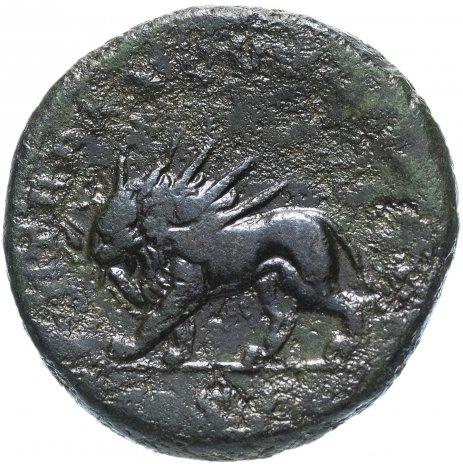 купить Римская империя, Каракалла, 197-217 годы, асс. (Лев)