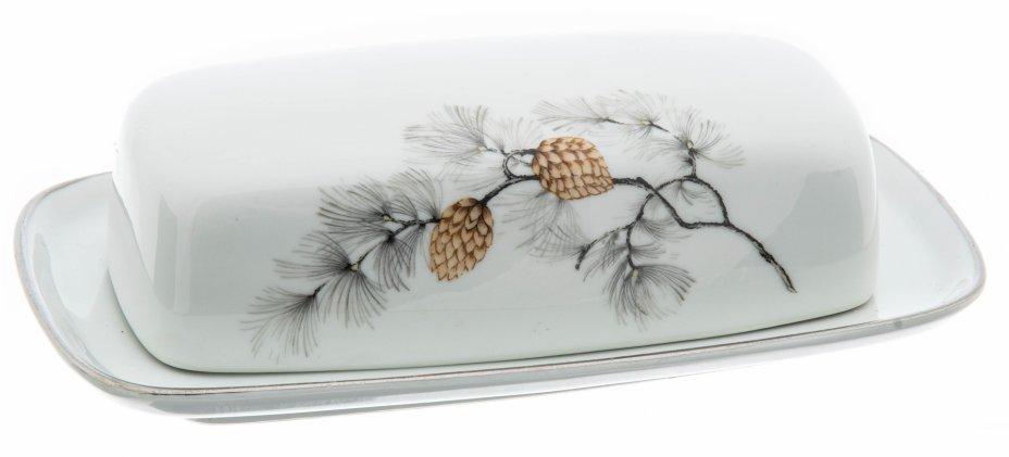 """купить Масленка  с декором в виде шишек и серебристой окантовкой, фарфор, деколь, мануфактура """"Sone"""",  Япония, 1970-1990 гг."""