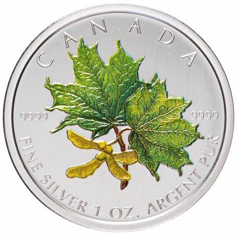 """купить Канада 5 долларов 2002 """"Кленовые листья"""" эмаль"""