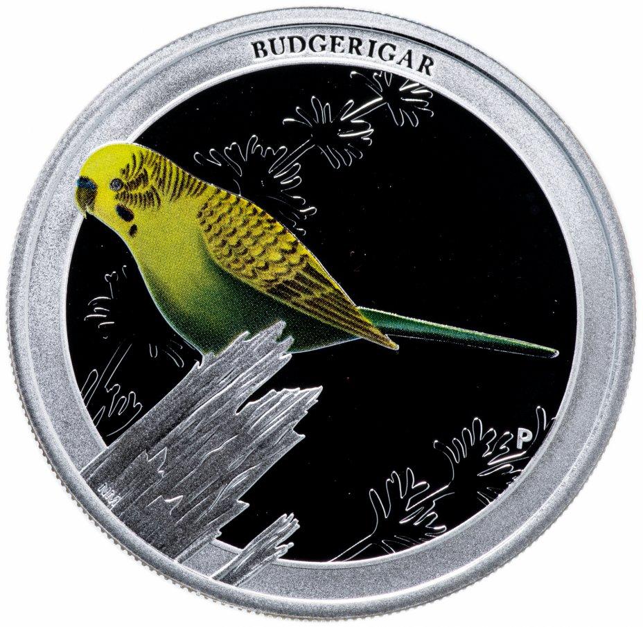 """купить Австралия 50 центов 2013  """"Птицы Австралии - Волнистый попугай"""""""