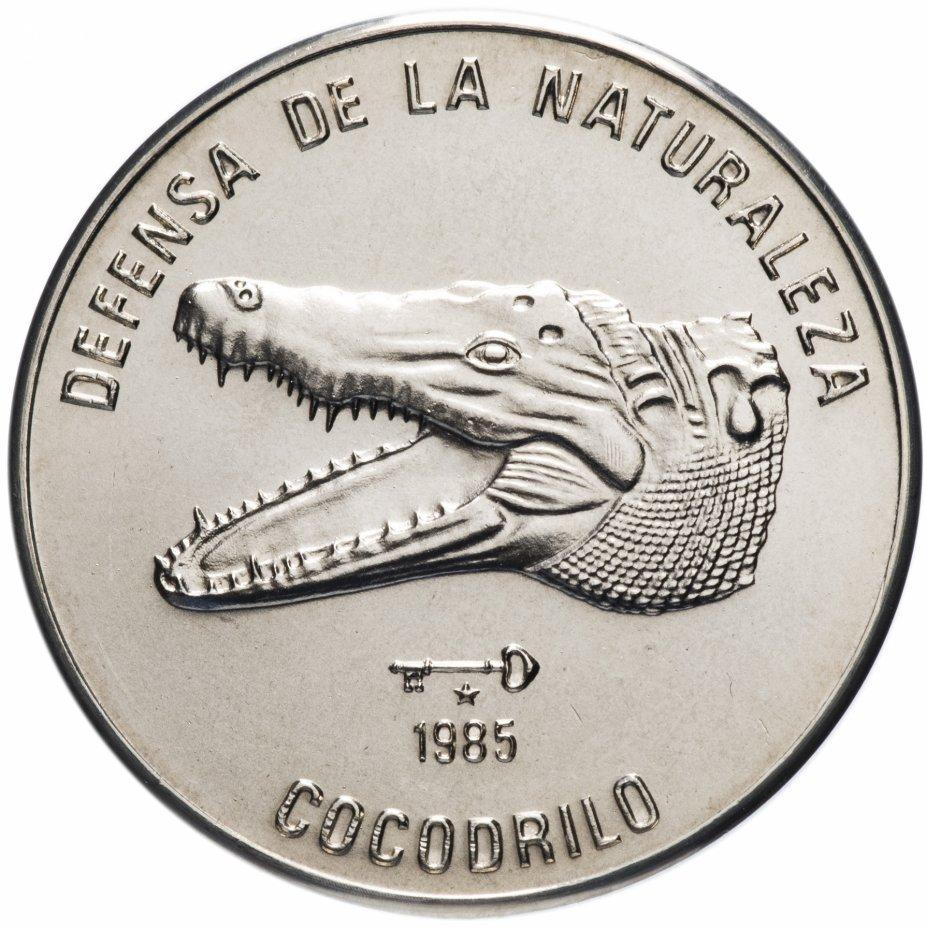 """купить Куба 1 песо (peso) 1985 """"Природный заповедник - Кубинский крокодил /голова/"""""""