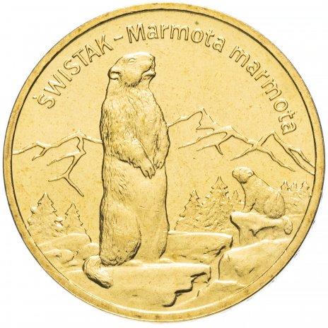 """купить Польша 2 злотых 2006 """"Альпийский сурок (Świstak, лат. Marmota marmota)"""""""