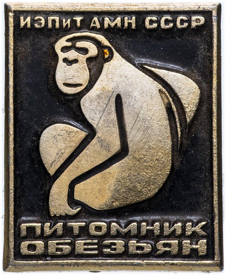 """купить Значок СССР 1969г """"Питомник Обезьян"""", Булавка"""