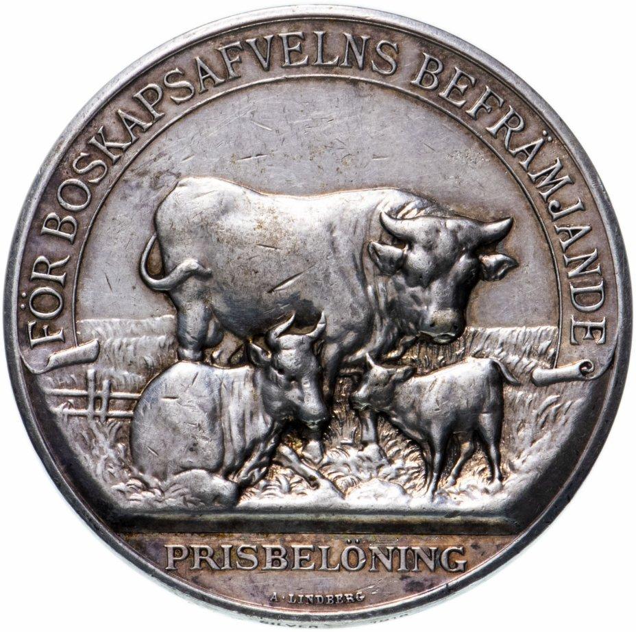 купить Швеция призовая медаль г. Мальме 1918