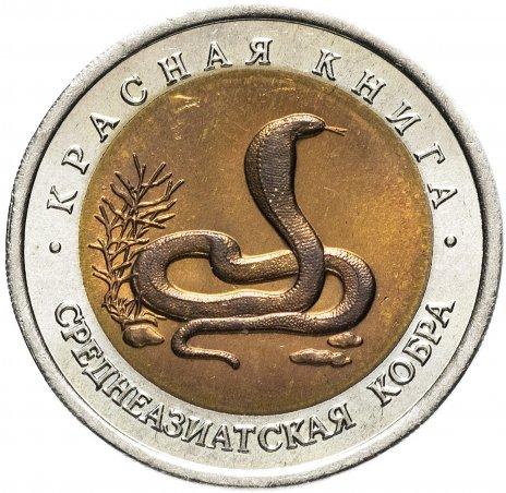 купить 10 рублей 1992 ЛМД Среднеазиатская кобра (Красная книга)