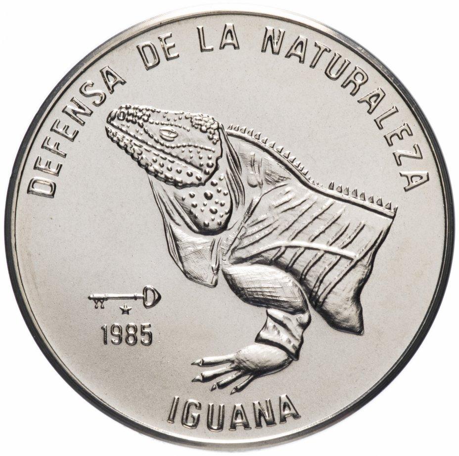 """купить Куба 1 песо (peso) 1985 """"Природный заповедник - Игуана /голова/"""""""