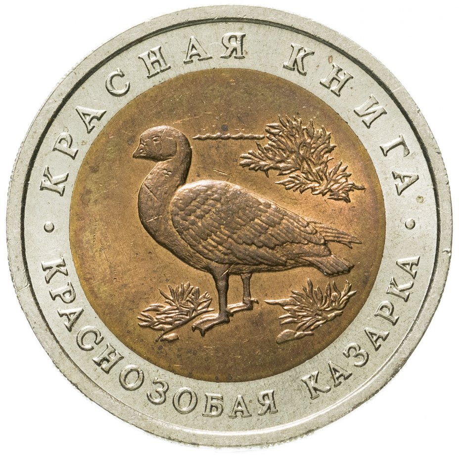 купить 10 рублей 1992 ЛМД  Краснозобая казарка - Красная книга
