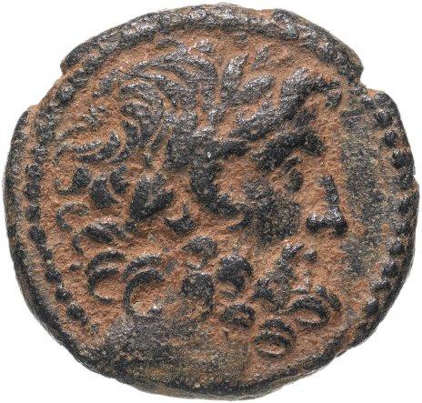 купить Сирия, Антиохия-на-Оронте под римским протекторатом (под Августа), I век до Р.Х., АЕ21.