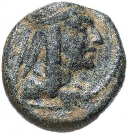 купить Великая Армения, Тигран II Великий, 95-56 годы до Р.Х., халк.