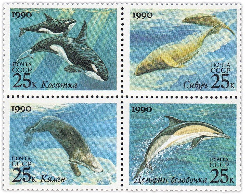 Армейских приколов, почта россии открытки дельфин