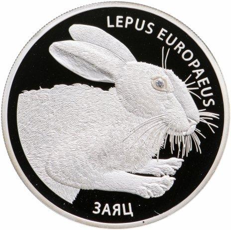 купить Беларусь 20 рублей 2014 «Заяц»