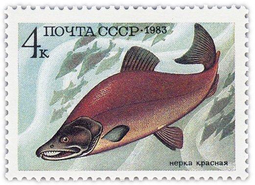 """купить 4 копейки 1983 """"Промысловые рыбы: Красная нерка"""""""