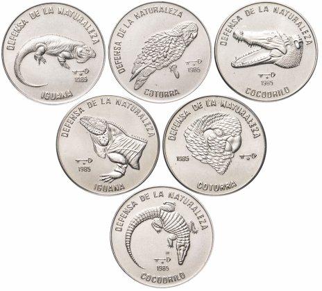 """купить Куба набор из 6 монет 1 песо 1985 """"Защита дикой природы"""""""