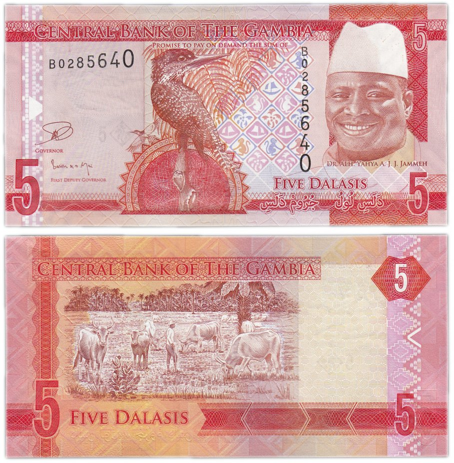 купить Гамбия 5 даласис 2015 (Pick 31)