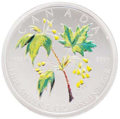"""купить Канада 5 долларов 2003 """"Кленовые листья"""" эмаль"""
