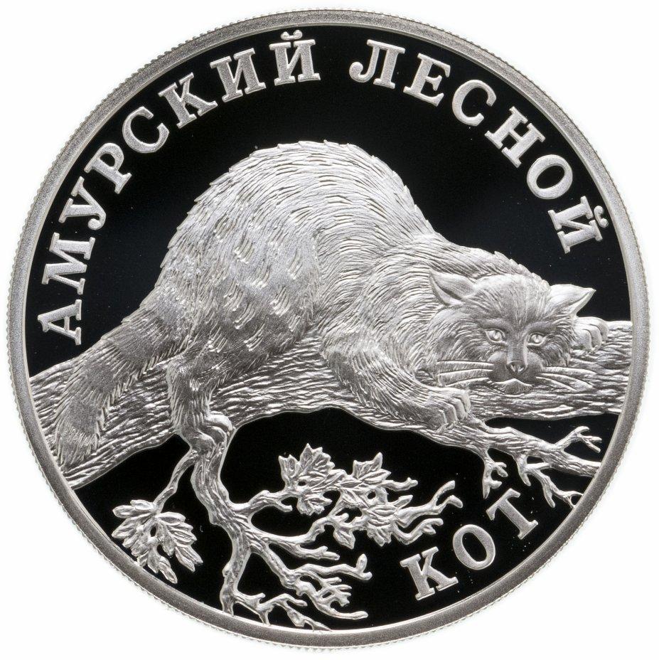 купить 1 рубль 2004 СПМД амурский лесной кот