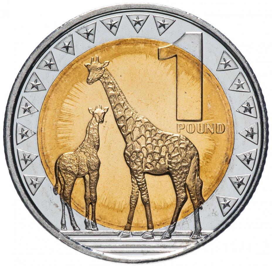 купить Южный Судан 1 фунт (pound) 2015