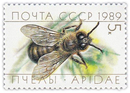 "купить 5 копеек 1989 ""Пчеловодство: Трутень"""