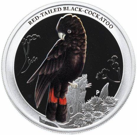 """купить Австралия 50 центов 2013 серия """"Птицы Австралии-краснохвостый чёрный какаду"""""""