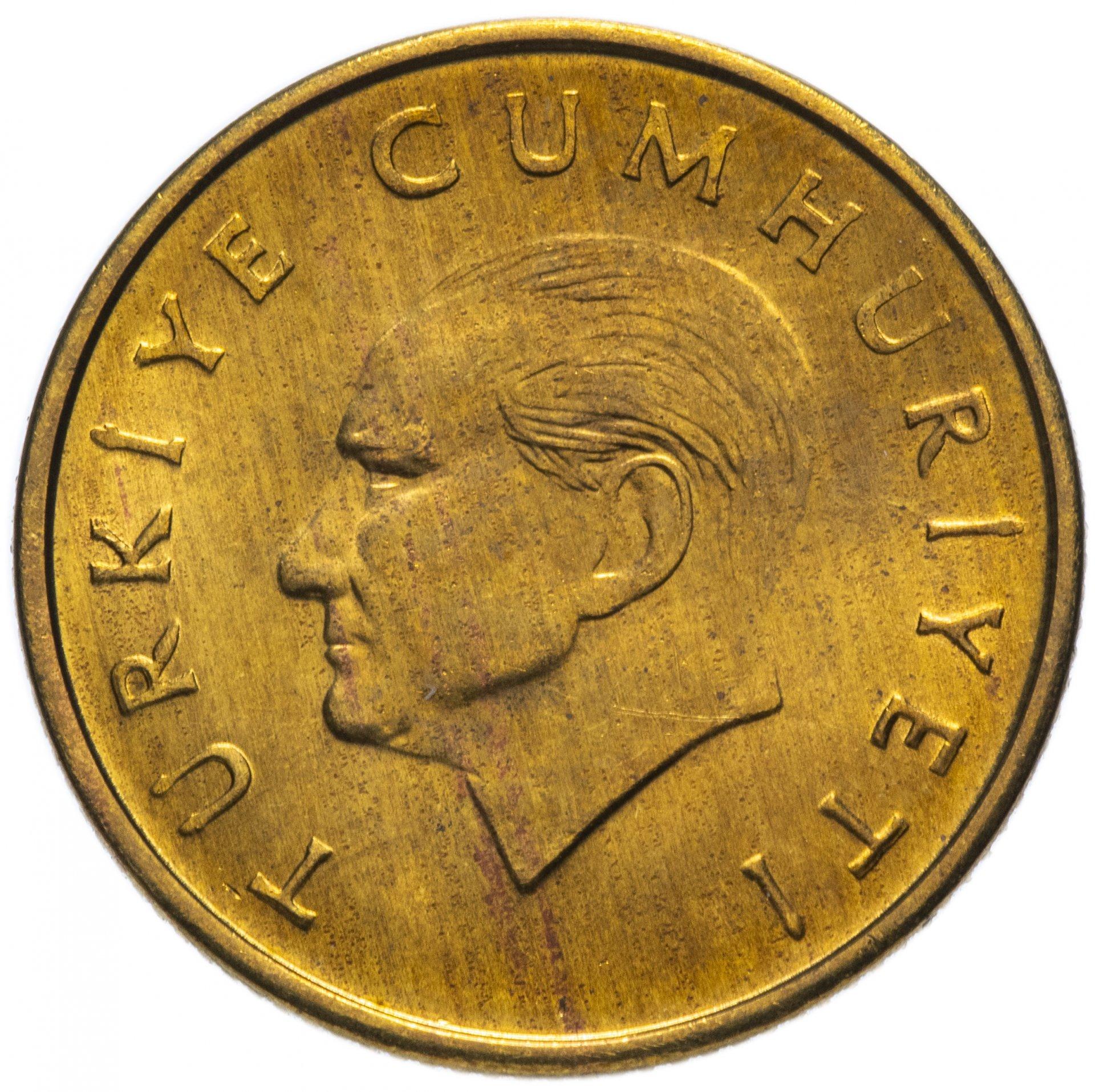 думает, турецкие деньги новые фото люди, которые