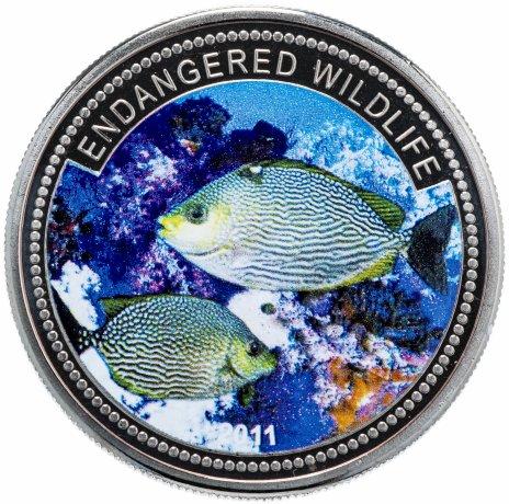 """купить Палау 1 доллар (dollar) 2011 """"Подводный мир - Вымирающие виды"""""""