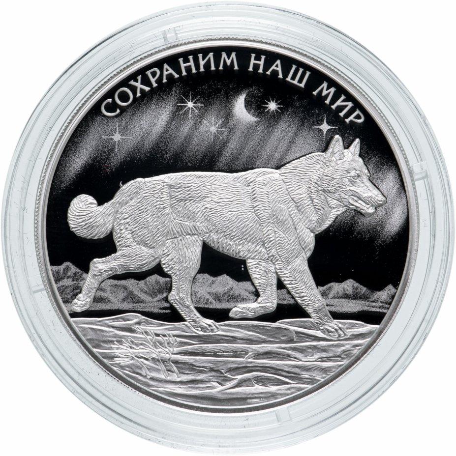 """купить 3 рубля 2020 Proof Полярный Волк """"Сохраним наш мир"""""""