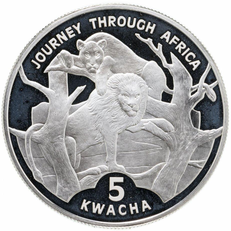 """купить Малави 5 квача 2006 """"Путешествие по Африке - Львы"""""""