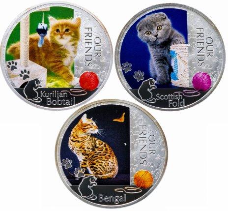 """купить Ниуэ набор 2 доллара 2012 """"Кошки - наши друзья. Курильский бобтейл, Бенгальская, Шотланская вислоухая"""""""