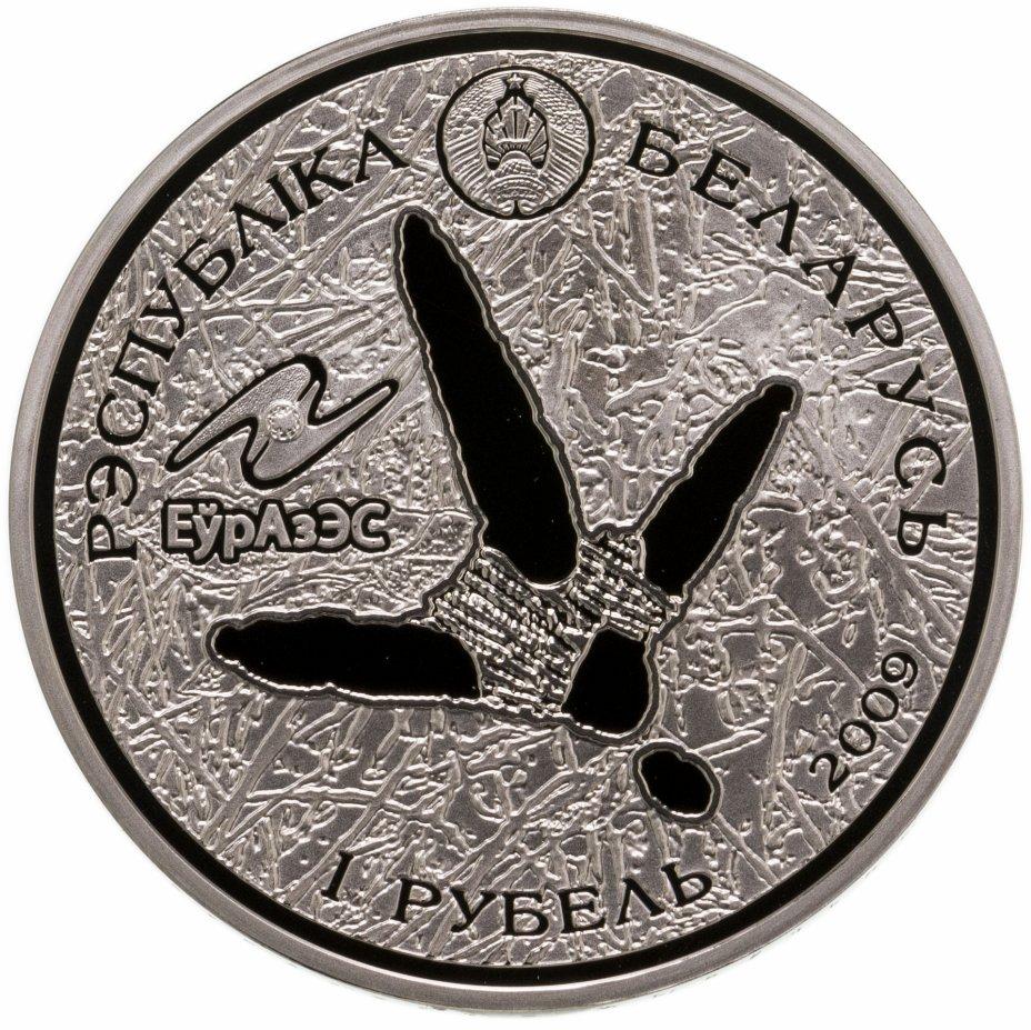 """купить Беларусь 1 рубль 2009 """"Животный мир стран ЕврАзЭС - Белый аист"""""""
