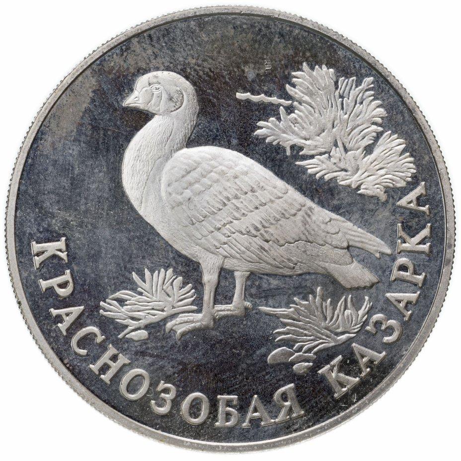 купить 1 рубль 1994 ЛМД краснозобая казарка
