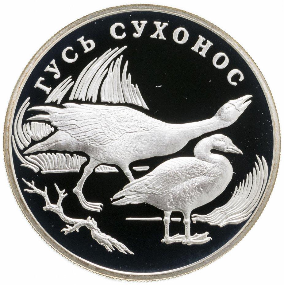 купить 1 рубль 2006 СПМД гусь сухонос